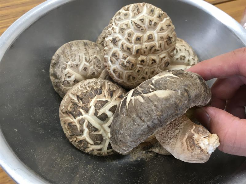 肉厚の原木乾燥椎茸