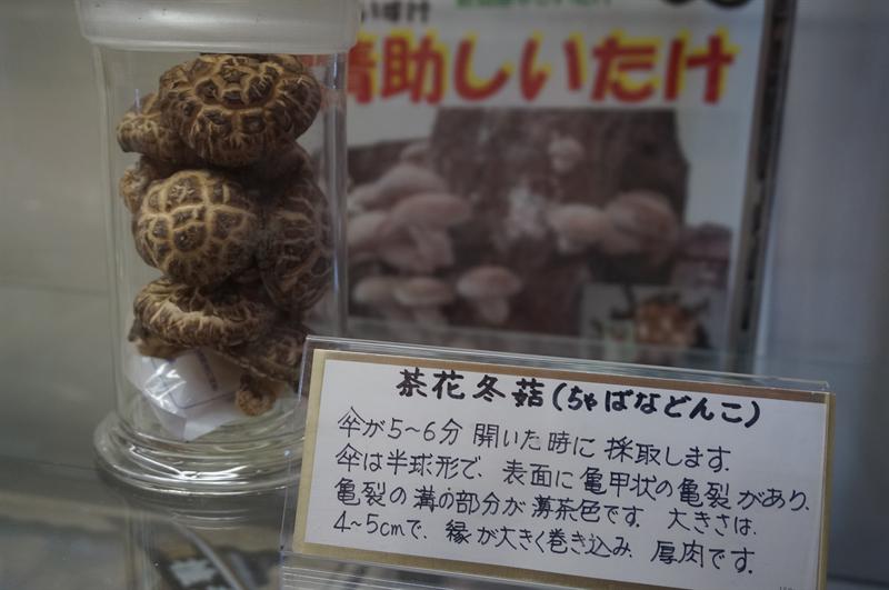 茶花冬菇(ちゃばなどんこ)