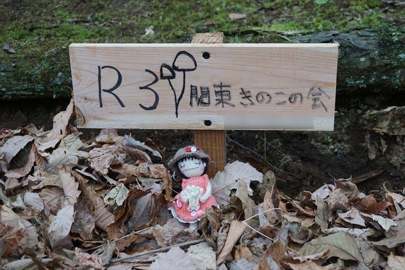 原木舞茸のオーナー制度