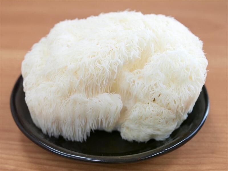 Lion's mane mushroom:ヤマブシタケ