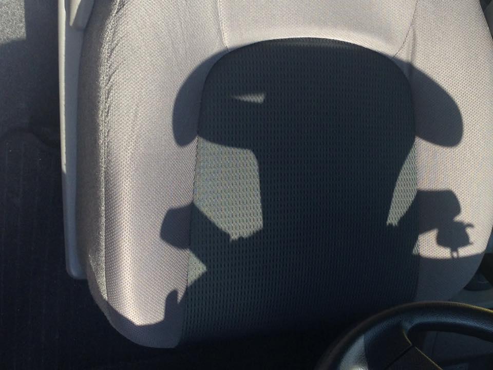 怪奇きのこ男 車のハンドルの影です