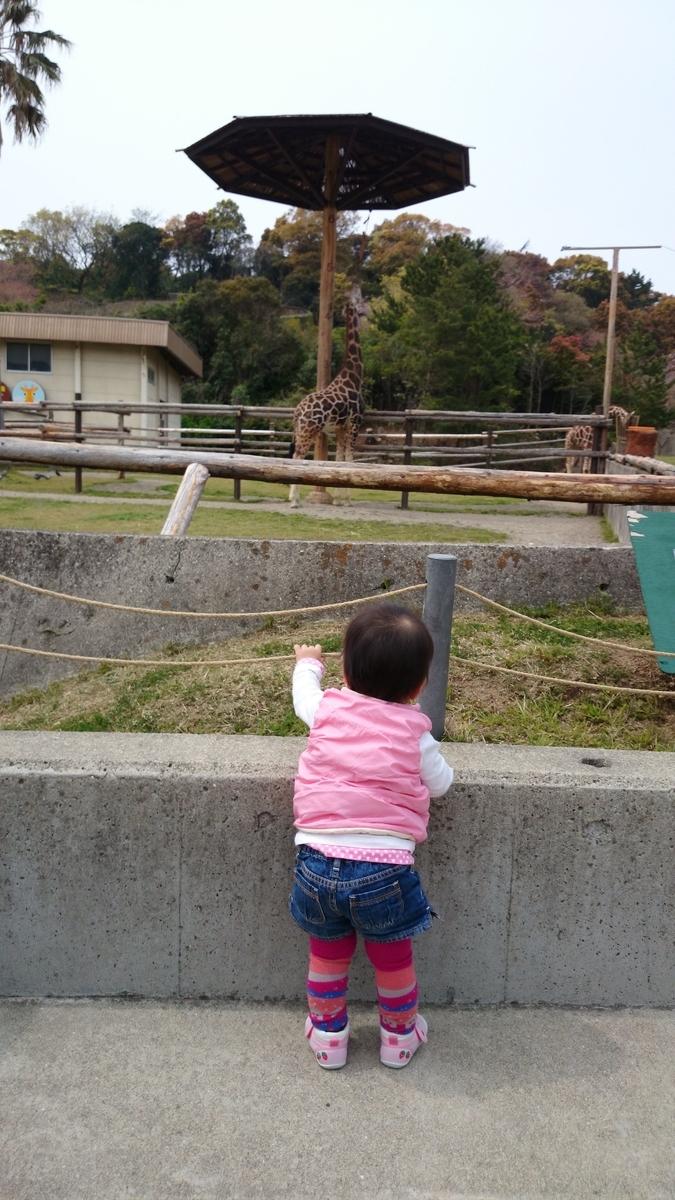 大きなきのこだなー みさき公園