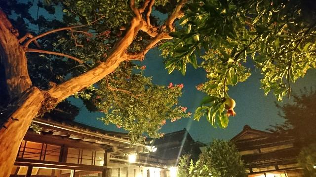 f:id:kanwa-shisei:20170827001824j:image