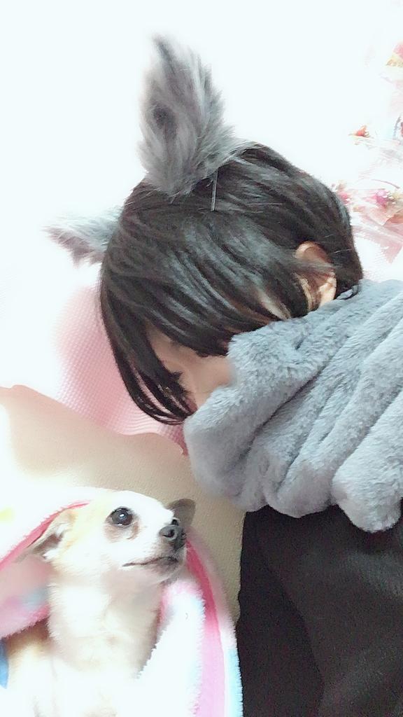 f:id:kanzakisatuki:20181111225613j:plain