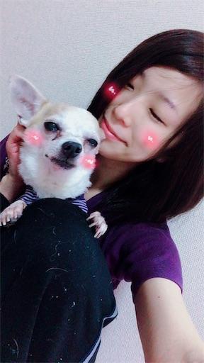 f:id:kanzakisatuki:20181219124358j:image