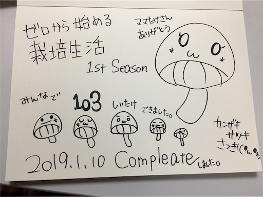 f:id:kanzakisatuki:20190110210752j:plain
