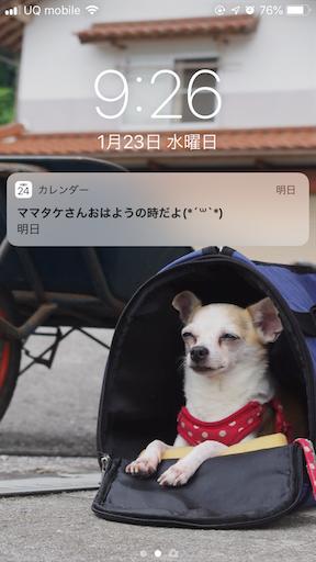 f:id:kanzakisatuki:20190123122513p:image
