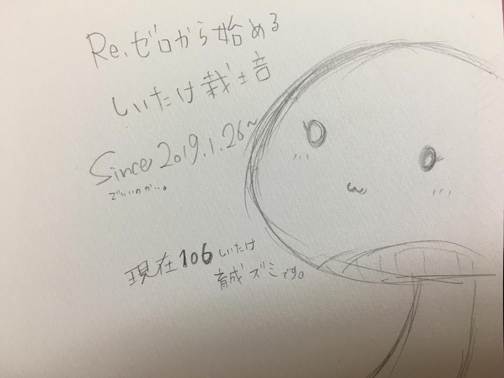 f:id:kanzakisatuki:20190126212335j:plain