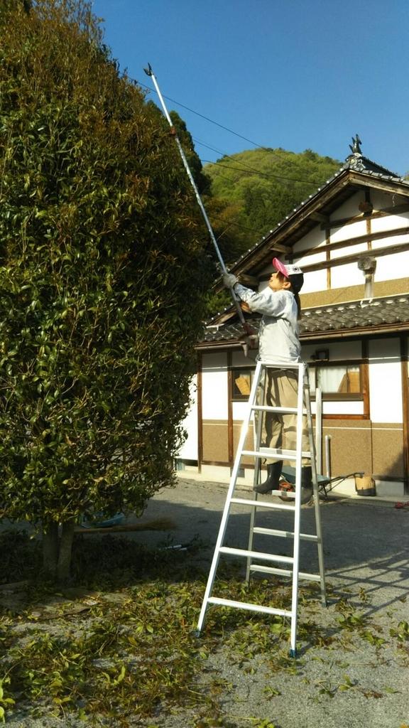 f:id:kanzakisatuki:20190227212506j:plain