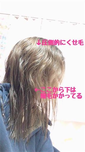 f:id:kanzakisatuki:20190320002749j:image