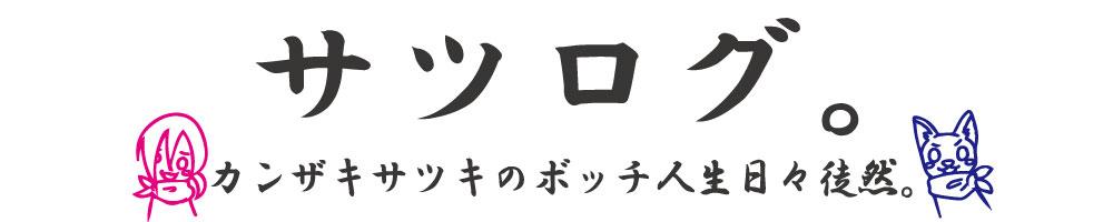 f:id:kanzakisatuki:20190323212620j:plain