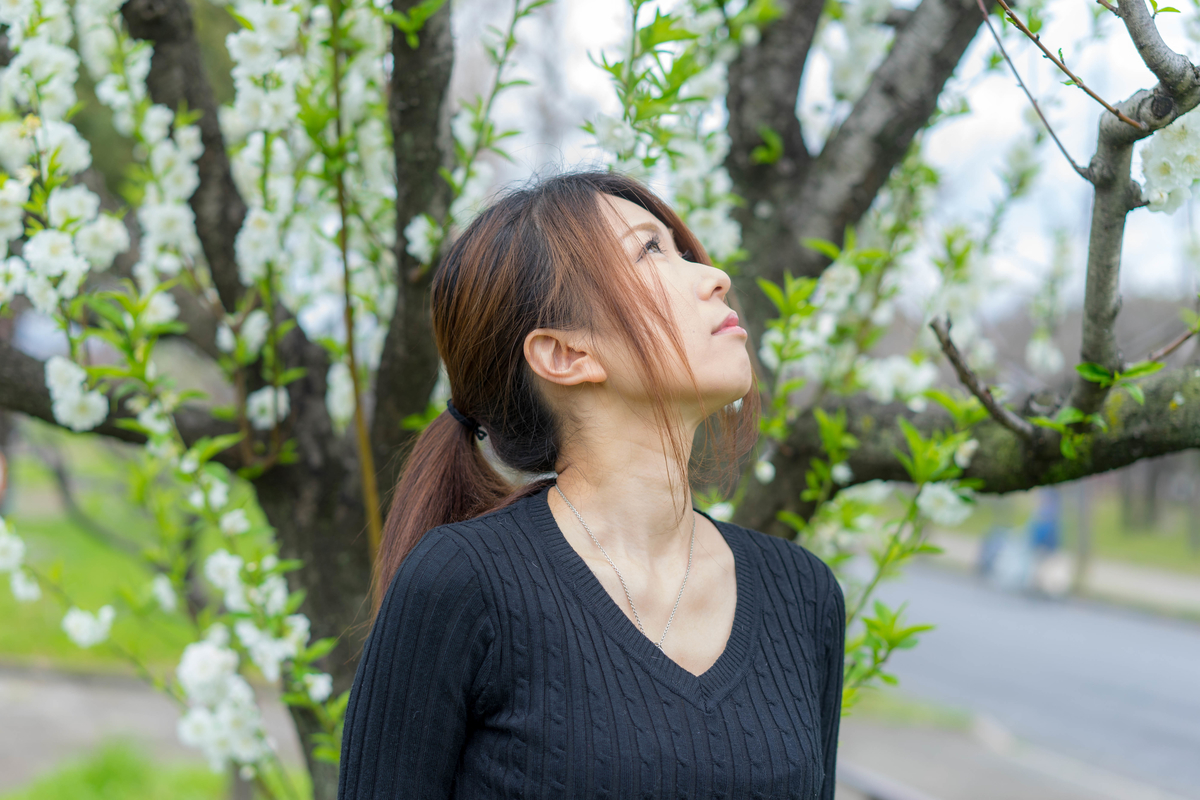 f:id:kanzakisatuki:20190324113519j:plain