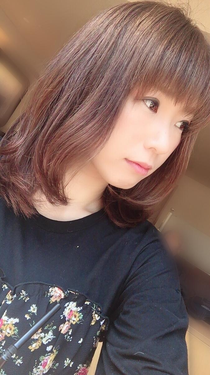 f:id:kanzakisatuki:20190406225743j:plain