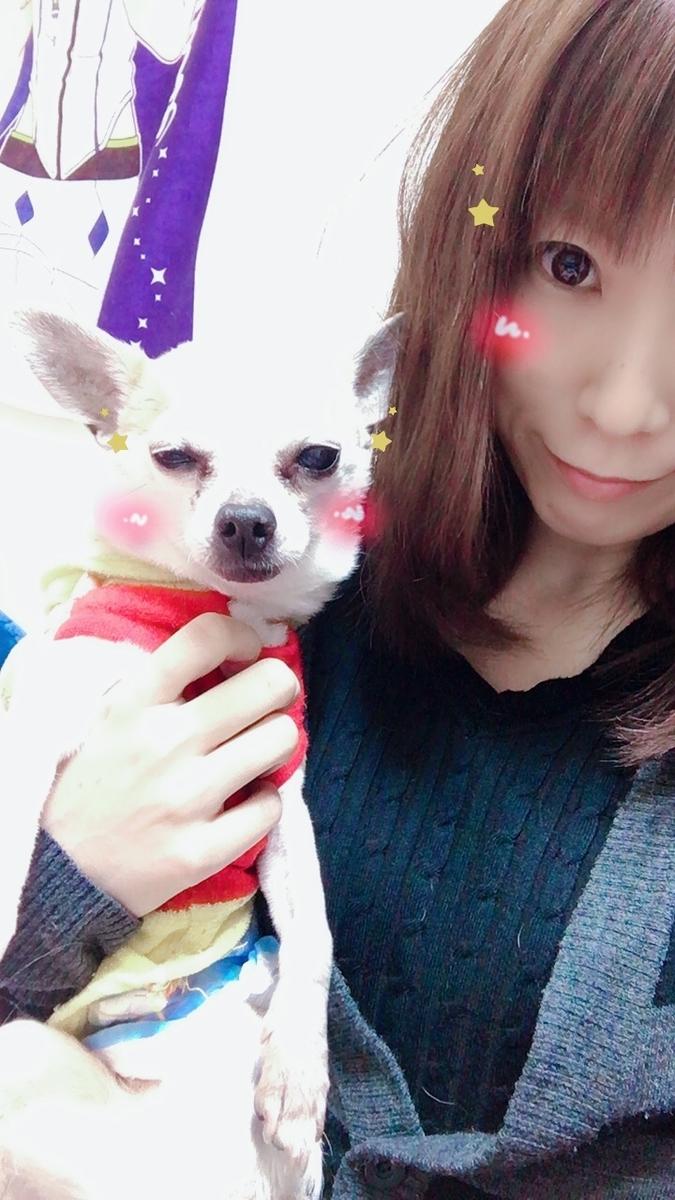 f:id:kanzakisatuki:20190412230804j:plain
