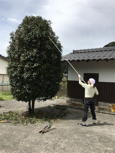 f:id:kanzakisatuki:20190428201002j:image
