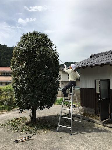 f:id:kanzakisatuki:20190428201818j:plain