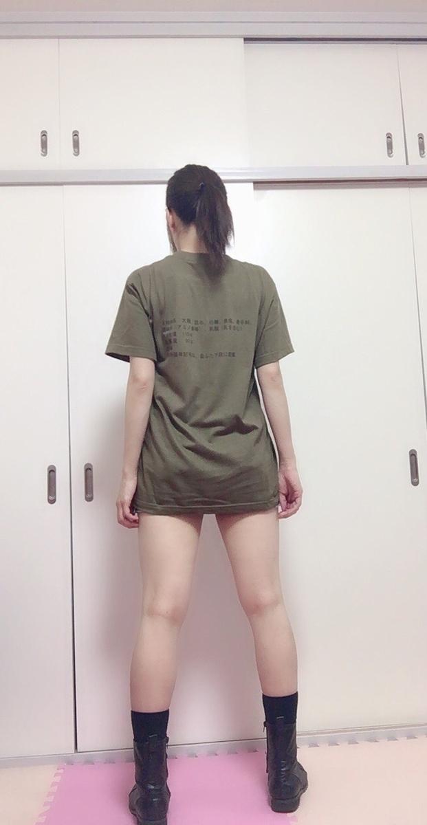 f:id:kanzakisatuki:20190601215245j:plain