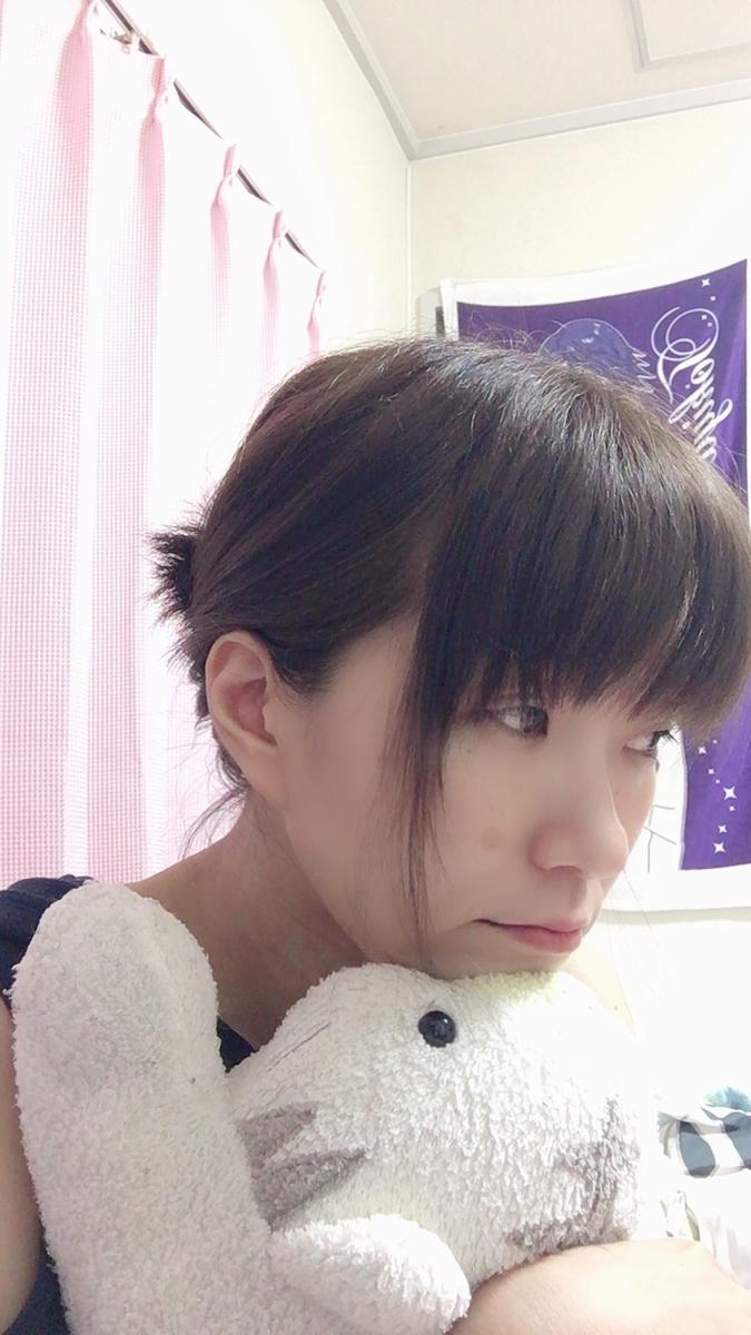 f:id:kanzakisatuki:20190817133025j:plain