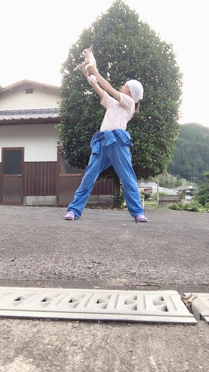 f:id:kanzakisatuki:20190925212953j:plain