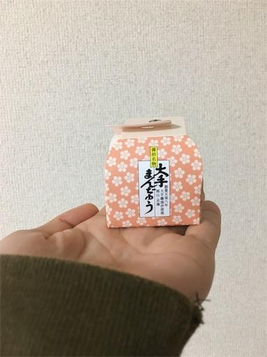 f:id:kanzakisatuki:20191015074104j:image