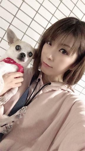f:id:kanzakisatuki:20191021084908j:image