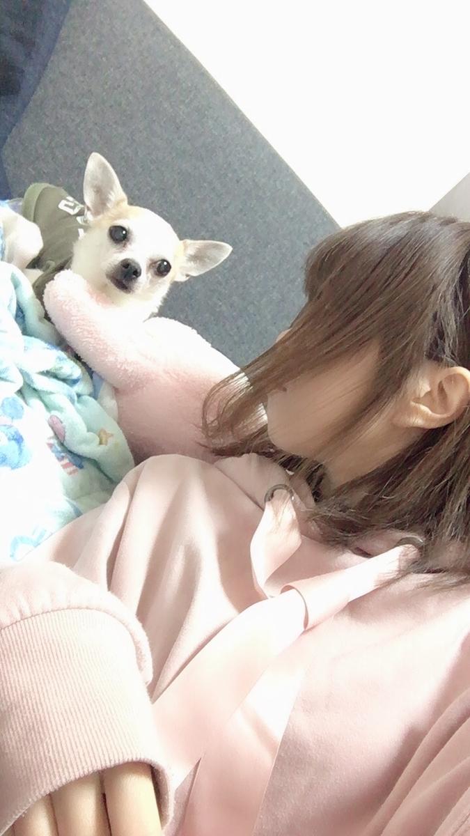 f:id:kanzakisatuki:20191130212202j:plain