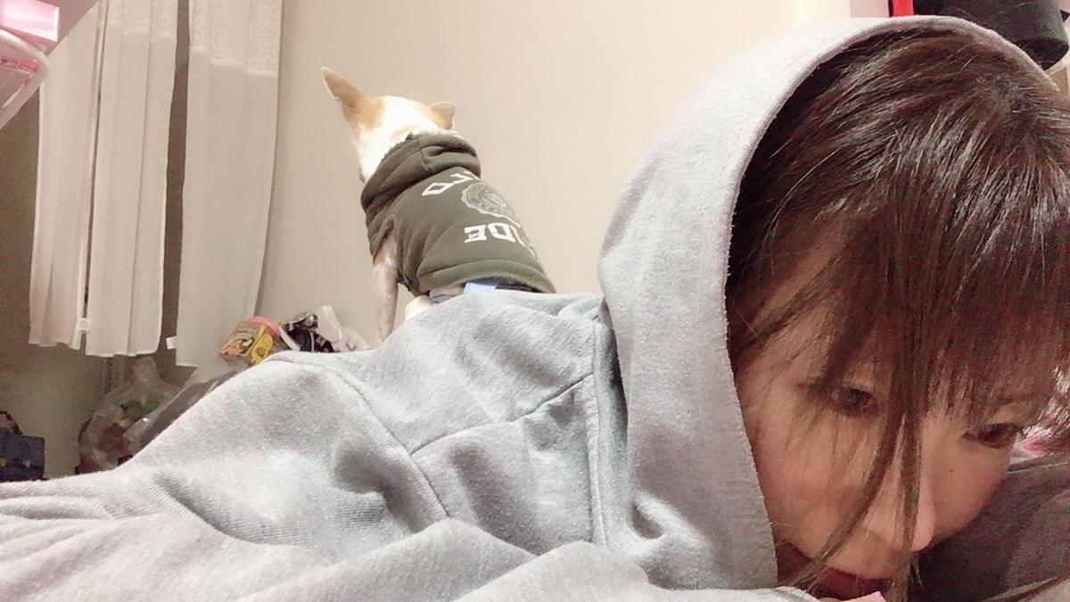 f:id:kanzakisatuki:20191217202843j:plain