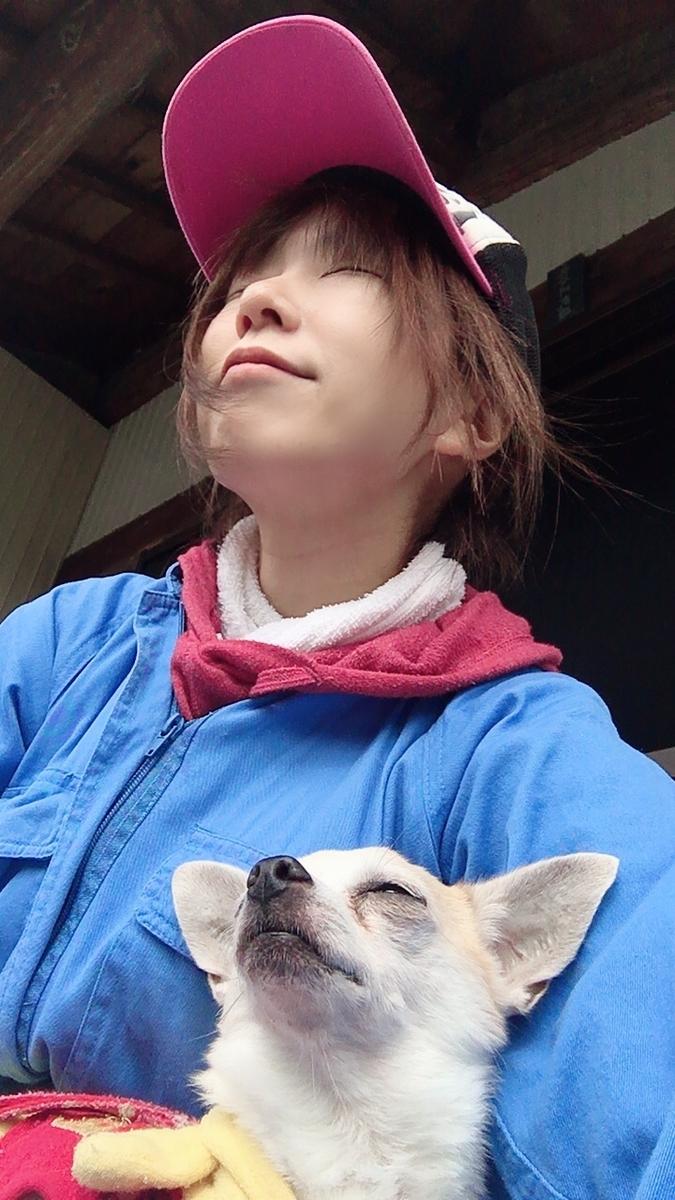 f:id:kanzakisatuki:20191229123425j:plain