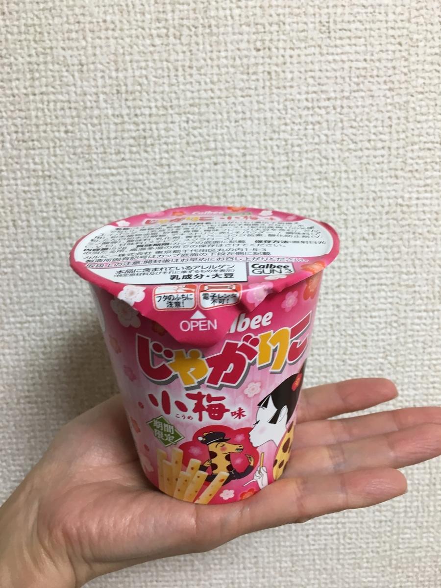 f:id:kanzakisatuki:20200115230300j:plain