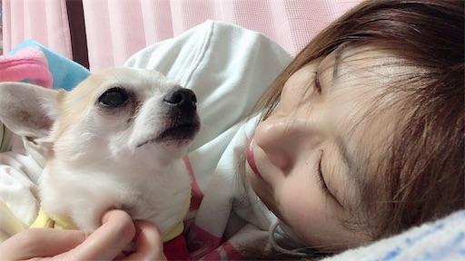 f:id:kanzakisatuki:20200131001155j:image