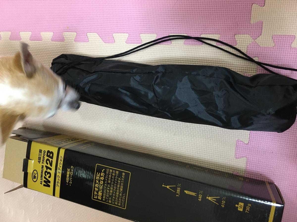 f:id:kanzakisatuki:20200309193031j:plain