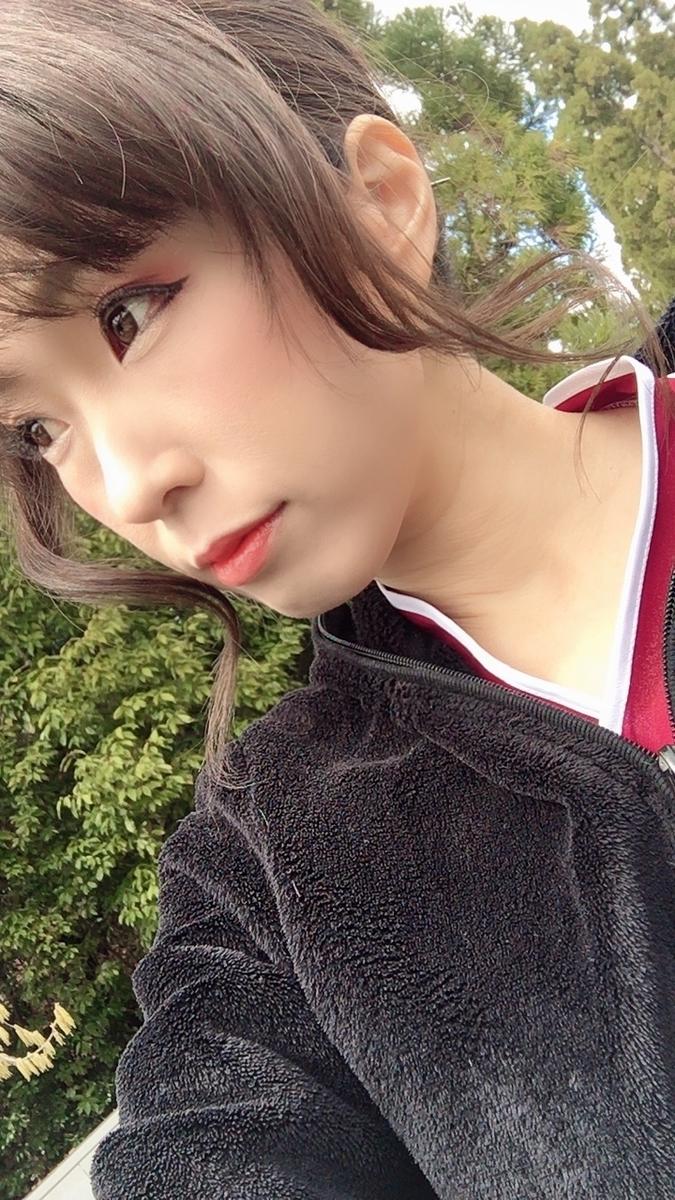 f:id:kanzakisatuki:20200329210230j:plain