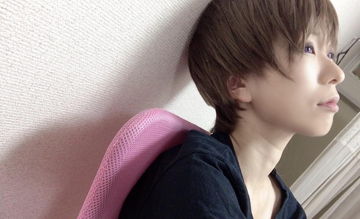 f:id:kanzakisatuki:20200818202518j:plain