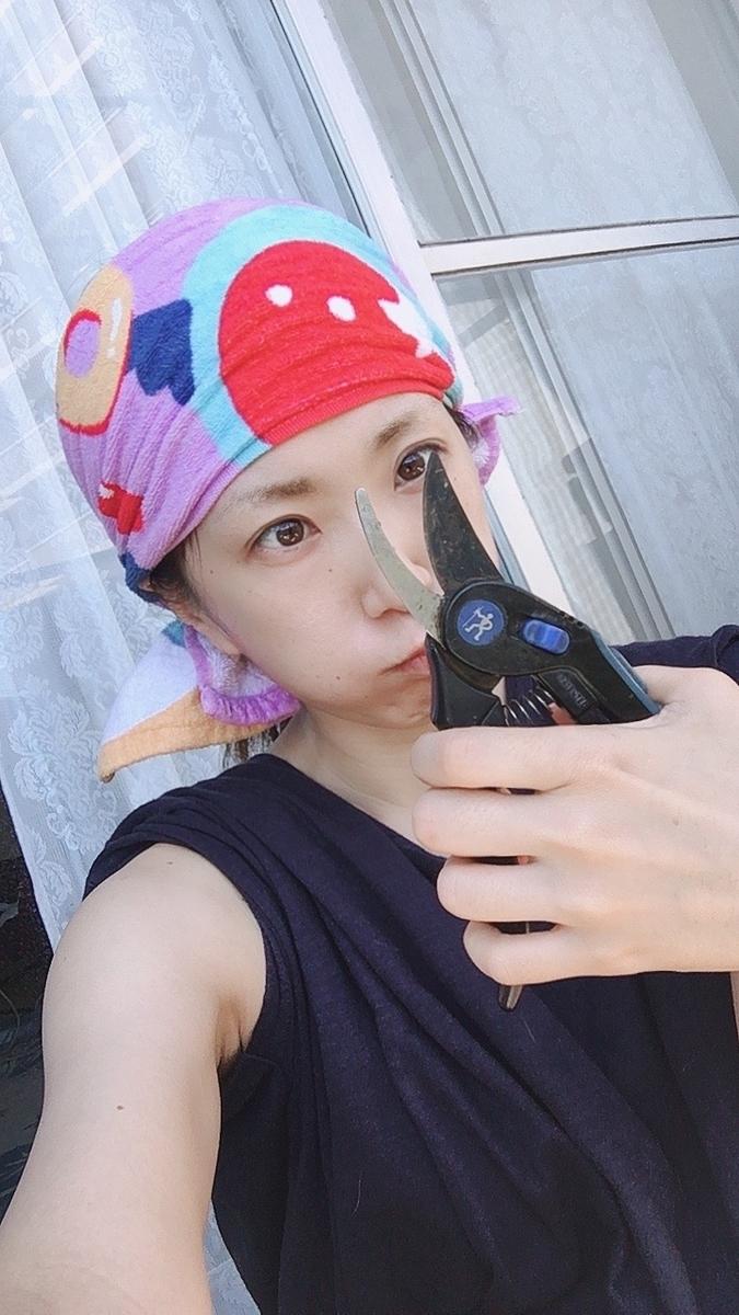 f:id:kanzakisatuki:20200819210824j:plain