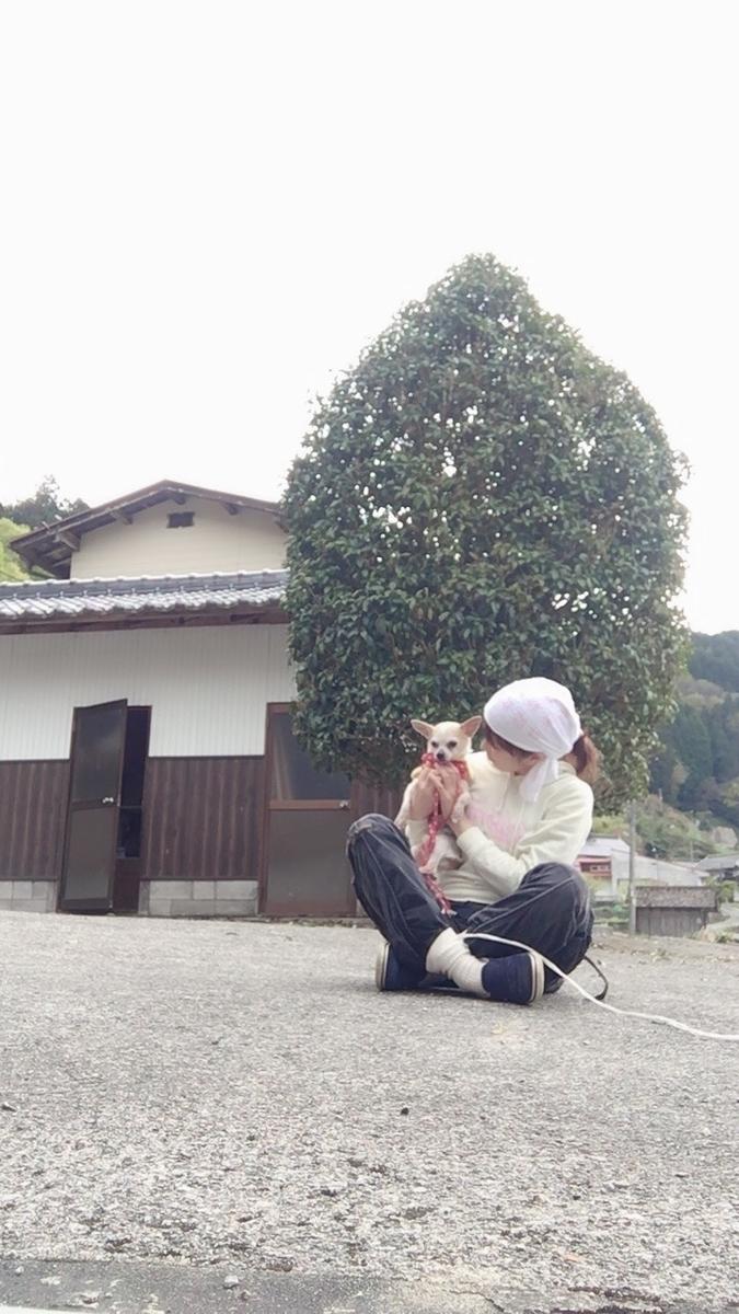 f:id:kanzakisatuki:20200919221245j:plain