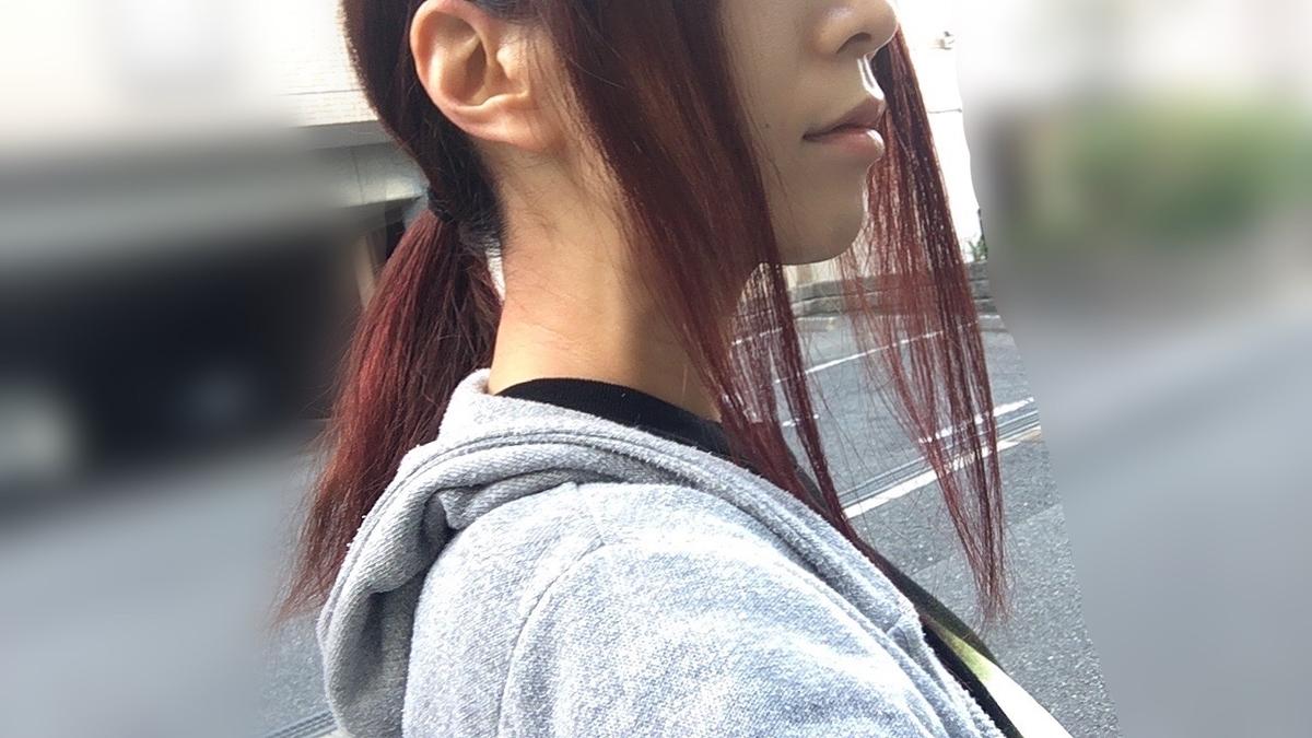f:id:kanzakisatuki:20201119221903j:plain