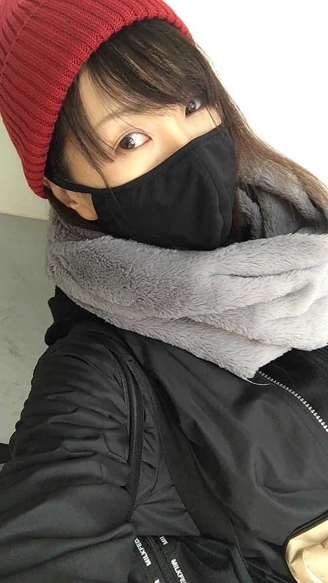 f:id:kanzakisatuki:20210104170327j:plain