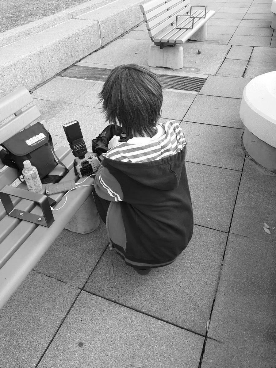 f:id:kanzakisatuki:20210105232033j:plain
