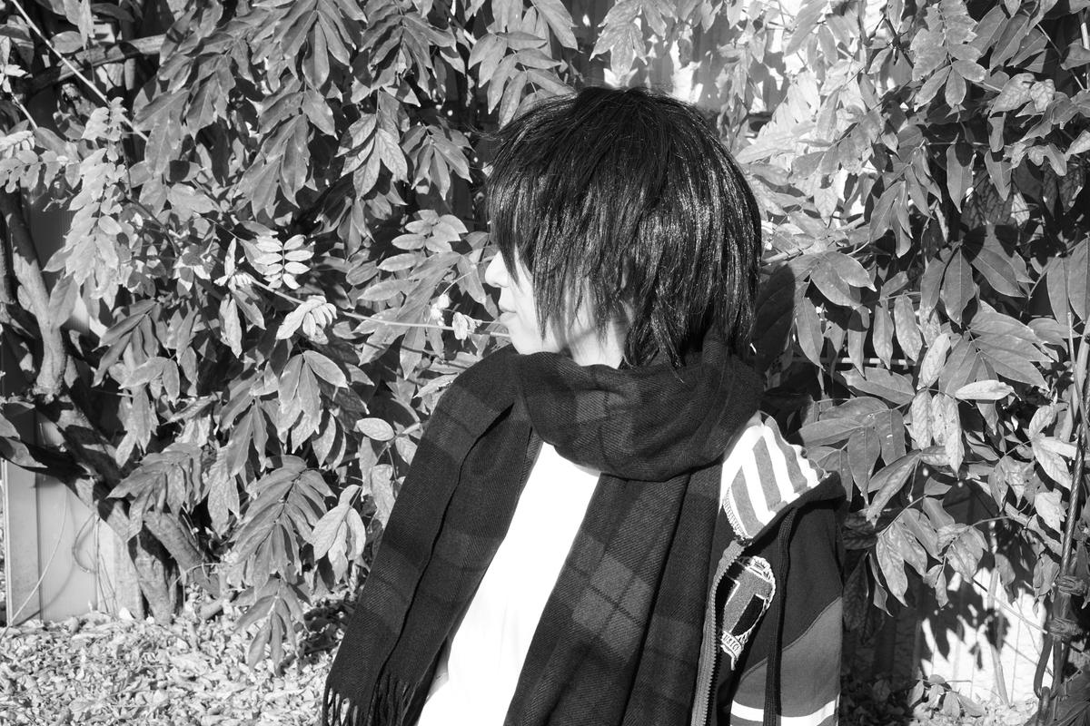 f:id:kanzakisatuki:20210106214936j:plain