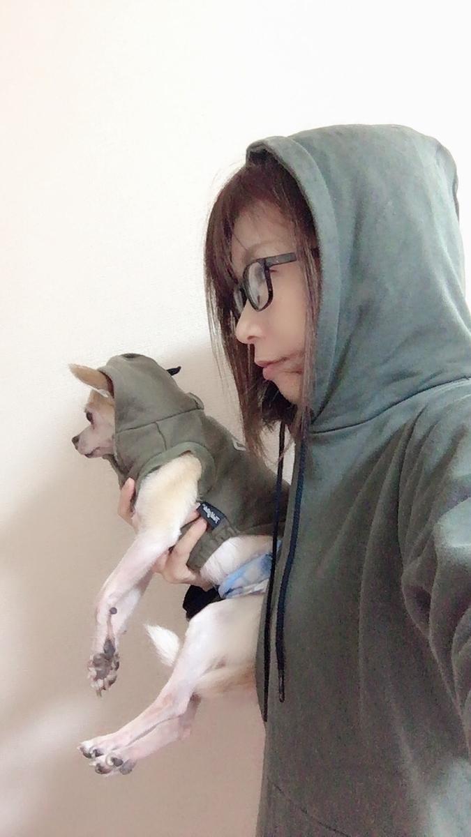 f:id:kanzakisatuki:20210107204420j:plain