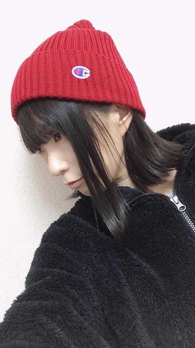 f:id:kanzakisatuki:20210109225339j:plain