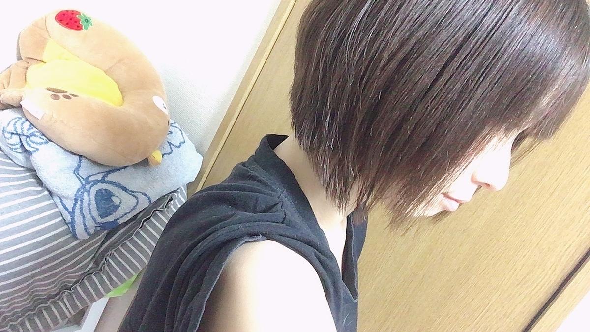 f:id:kanzakisatuki:20210411200129j:plain