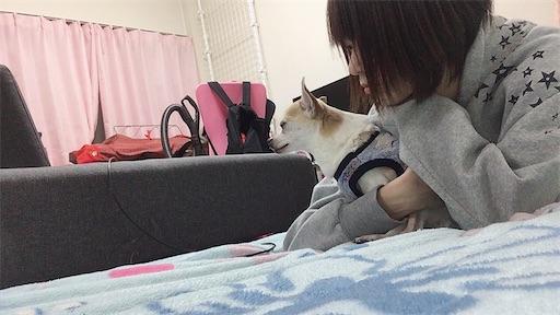 f:id:kanzakisatuki:20210414001048j:image