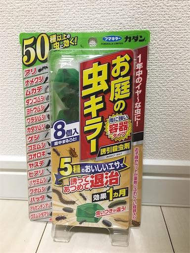 f:id:kanzakisatuki:20210519083433j:image