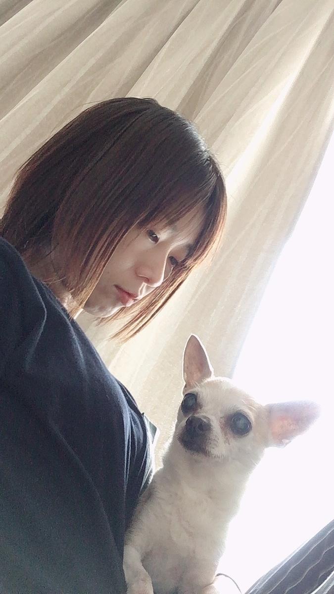 f:id:kanzakisatuki:20210520072635j:plain