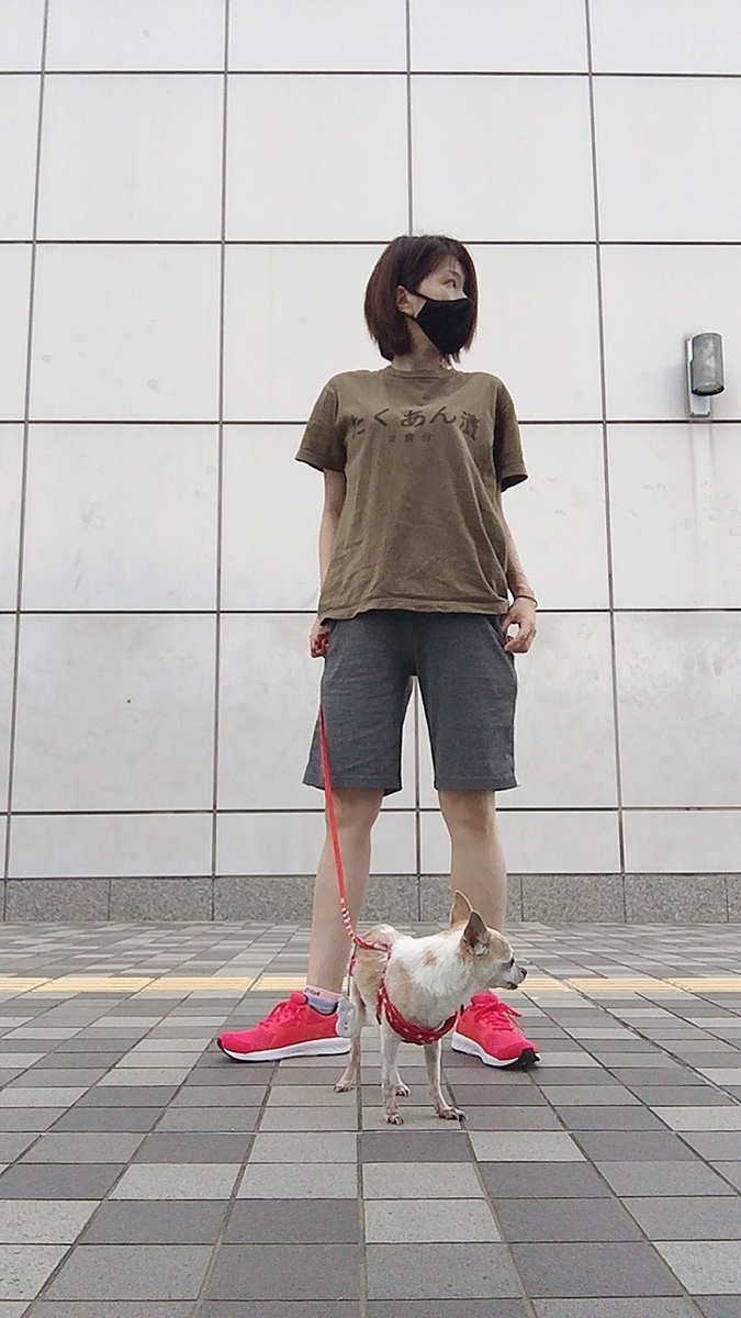 f:id:kanzakisatuki:20210622202441j:plain