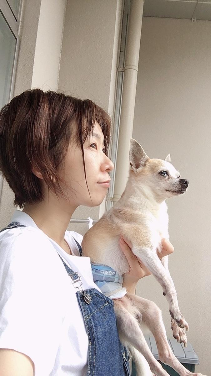 f:id:kanzakisatuki:20210701200816j:plain