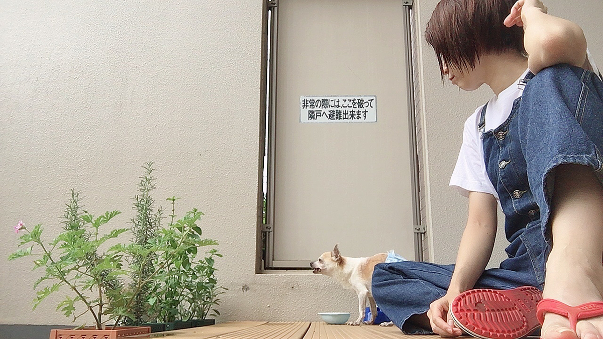 f:id:kanzakisatuki:20210703194434j:plain