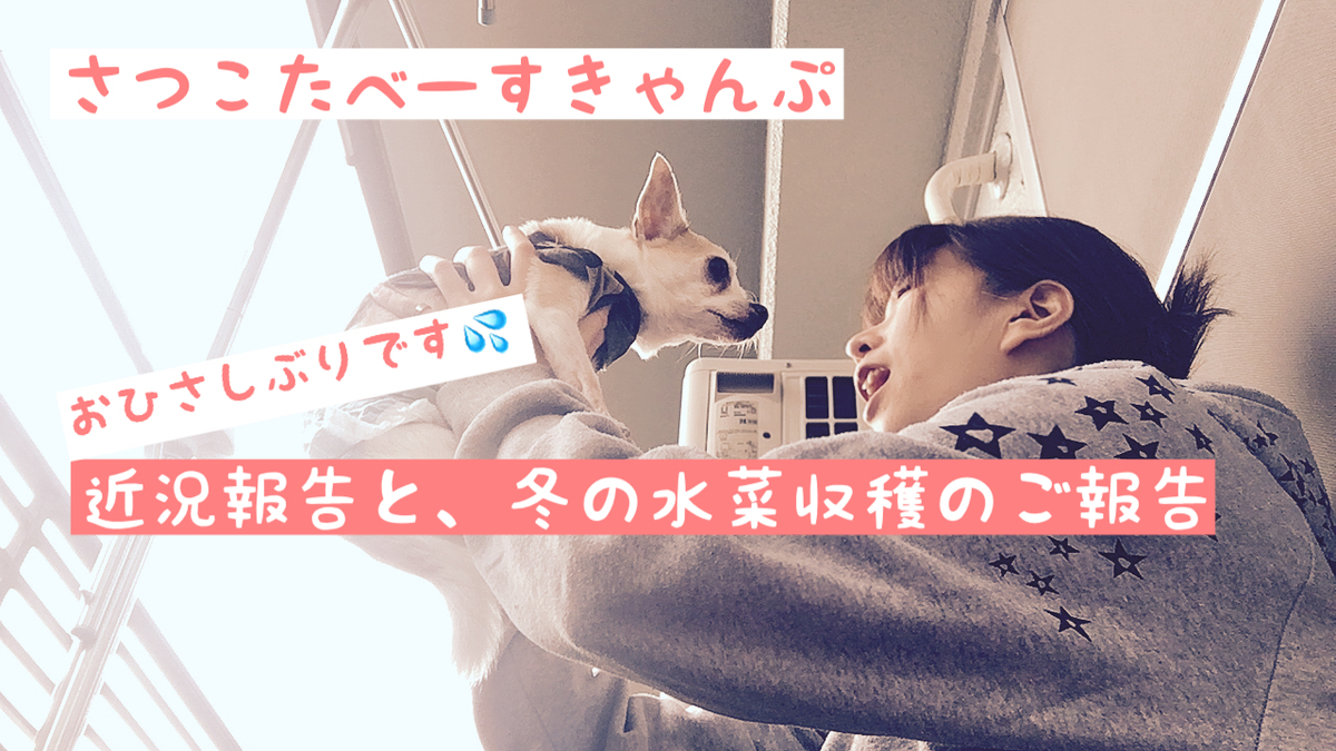 f:id:kanzakisatuki:20210705214154j:plain