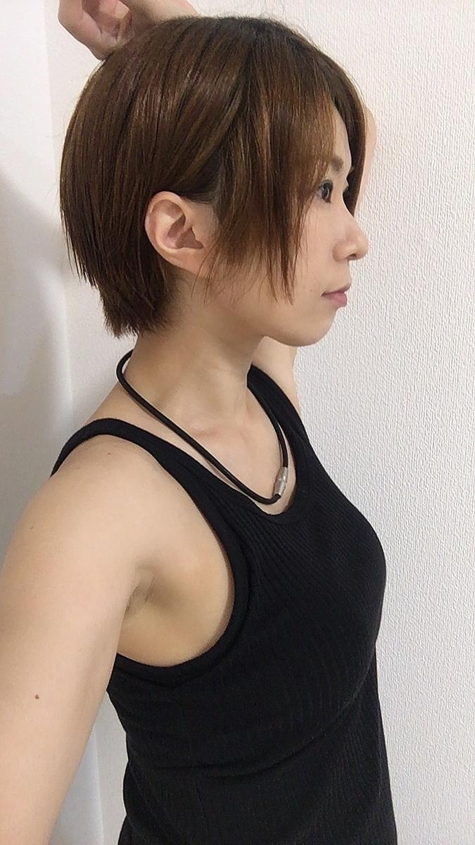 f:id:kanzakisatuki:20210902205525j:plain